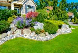 Pebbled Garden