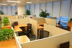 Office cubicles from Salt Lake City properties