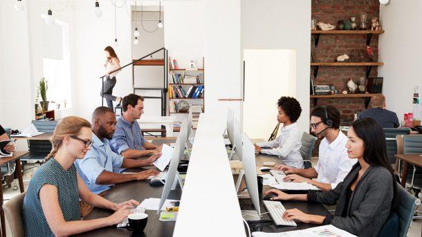 Employees focusing on their work