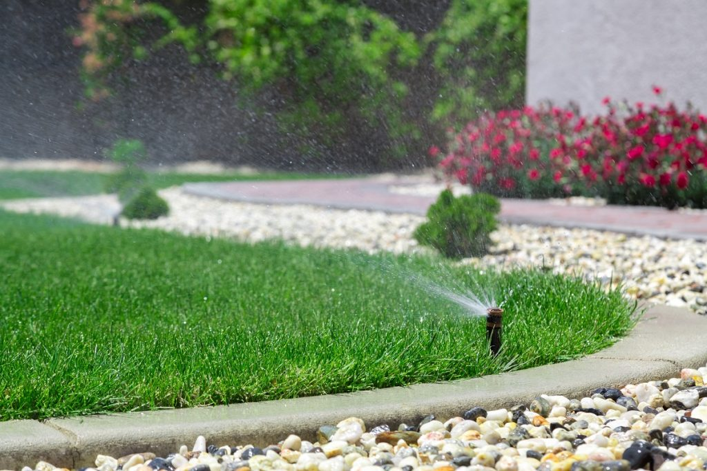 Lawn with water sprinkler