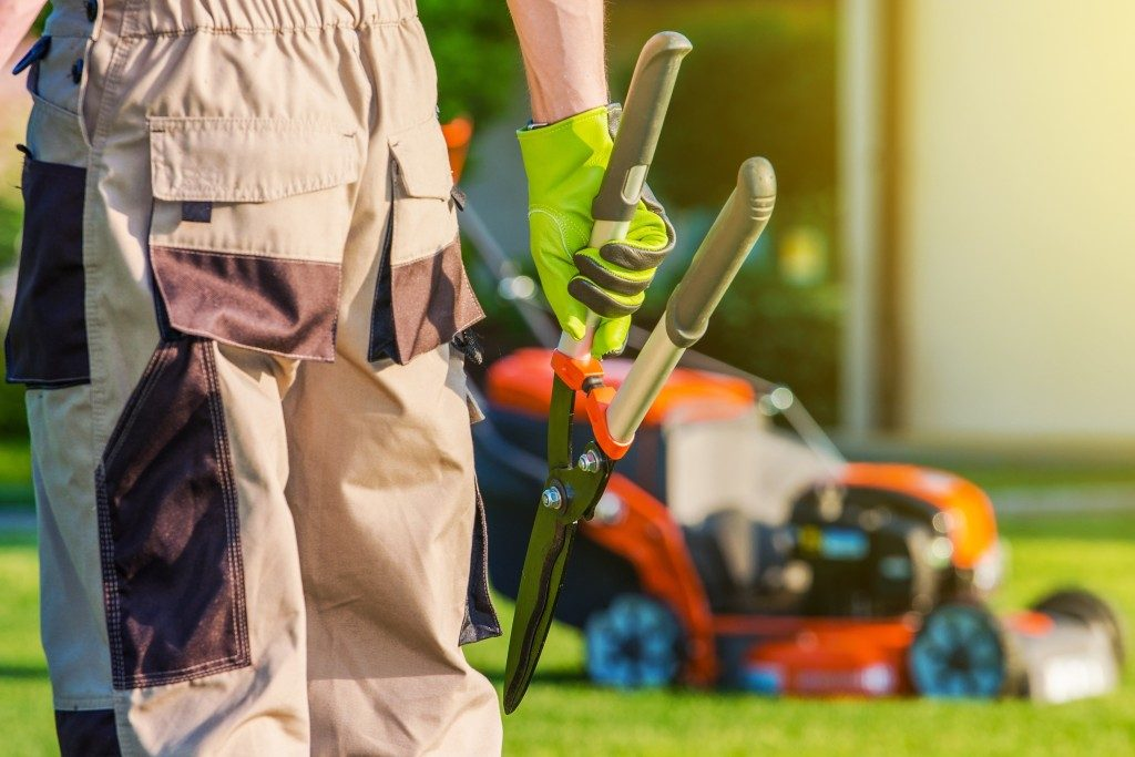 landscaping with shears