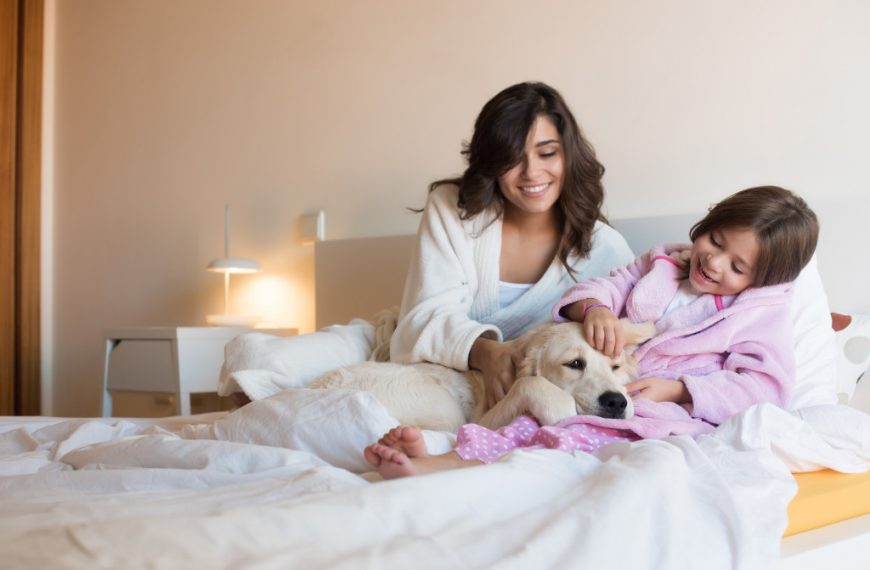 Best Home-based Careers for Moms