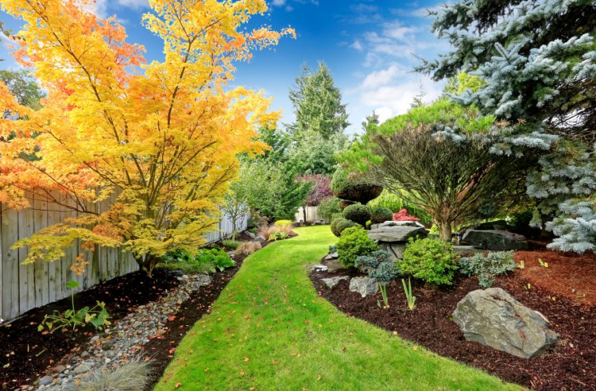 Taking Care of Your Garden: Expert Help for the Difficult Tasks