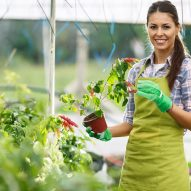 woman doing horticulture